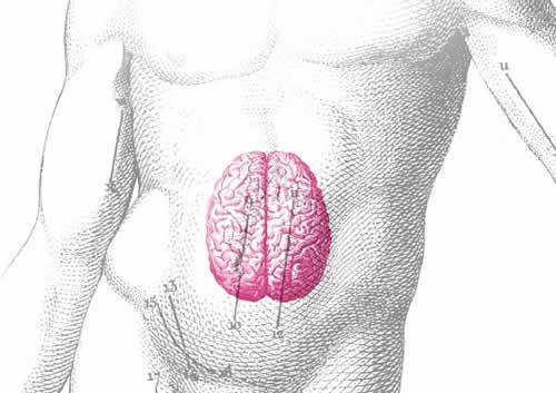 Disturbi di Stomaco ed Emozioni il cervello addominale